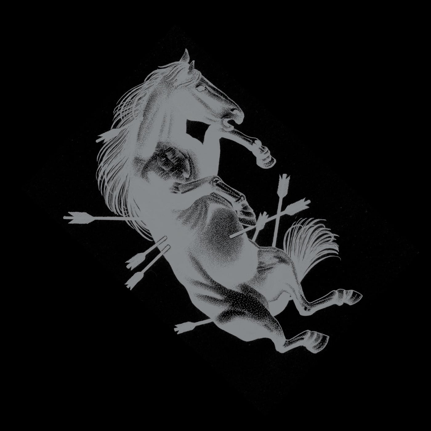 Touché Amoré, Dead Horse X Deluxe Vinyl Book designed Nick Steinhardt.