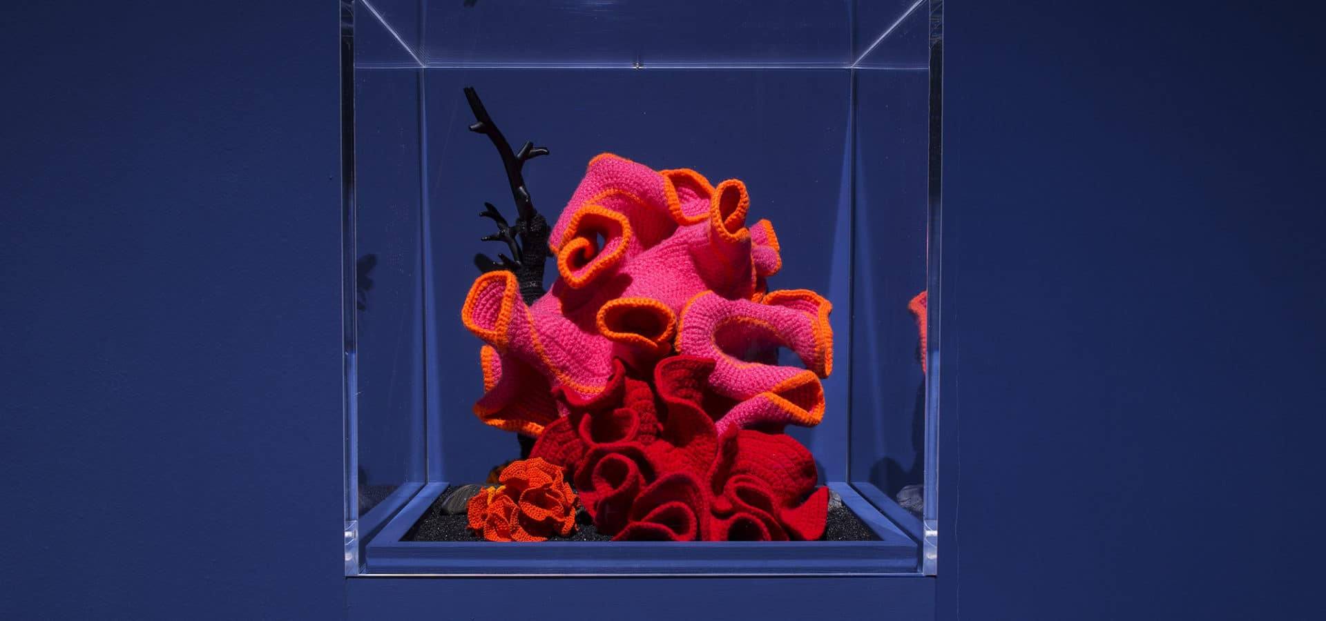 Christine and Margaret Wertheim's Crochet Coral Reef were included at the Venice Biennale.