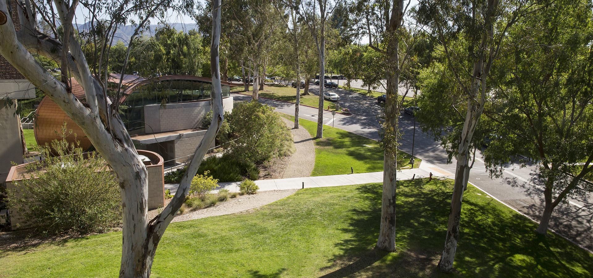 Calarts Campus