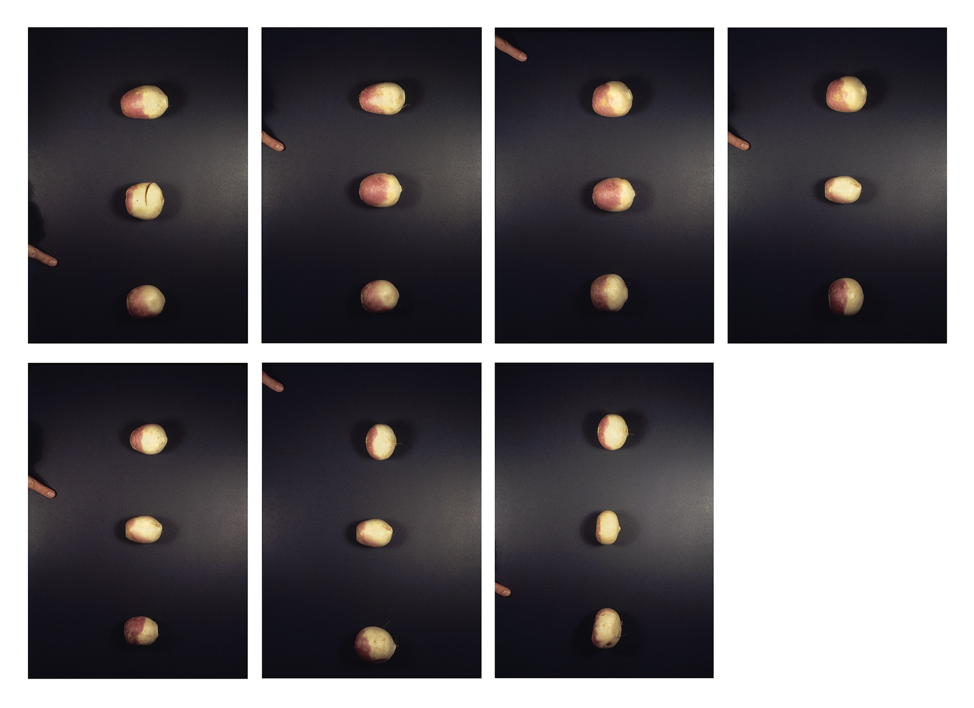 Choosing (A Game for Two Players): Turnips, 1971–72.